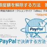 Paypal 使い方 動画マニュアル